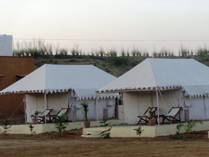 Pushkar Camel Safari & Pushkar photo gallery