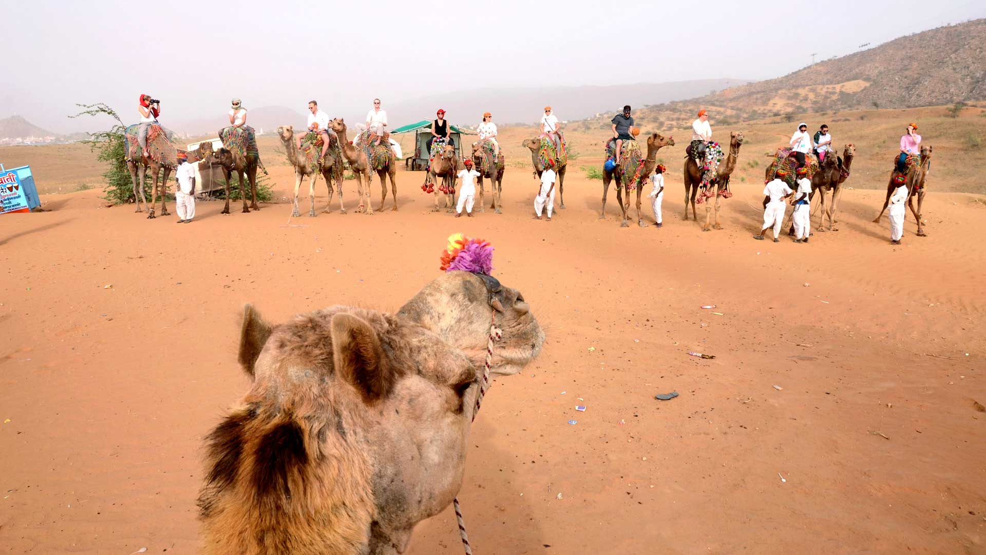 Image result for Camel Safari in Rajasthan