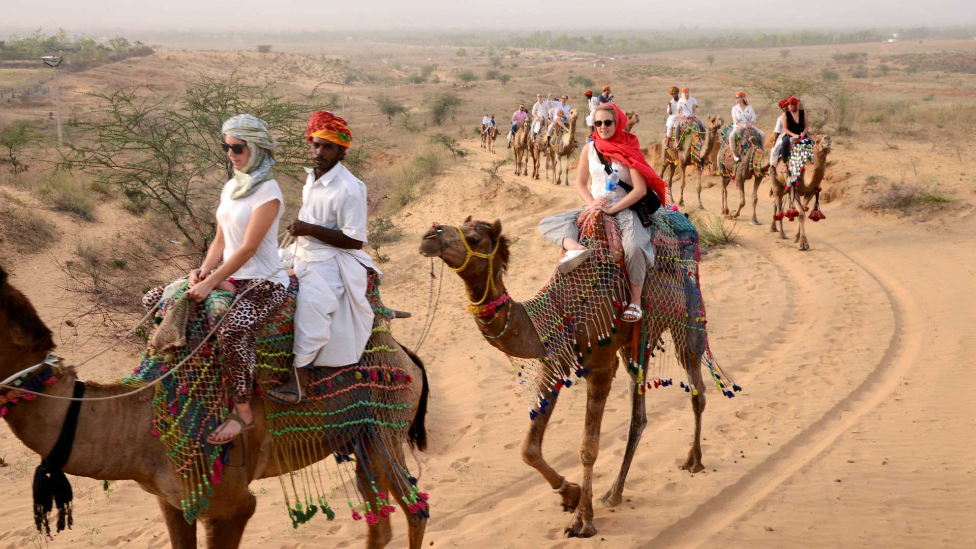 Image result for Enjoy camel safari in the desert